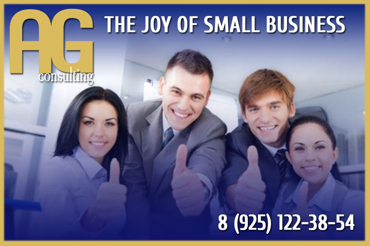 THE JOY OF SMALL BUSINESS